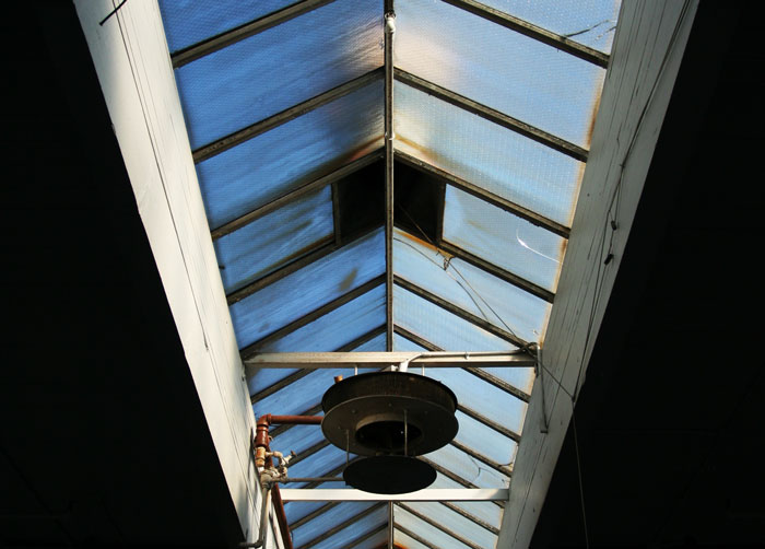 small-arms-skylight-IMG_8477