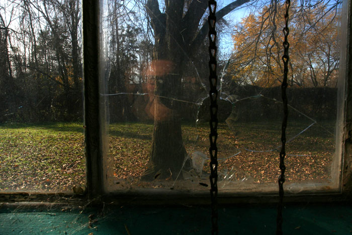 small-arms-tree-broken-window8452