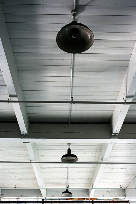 small-arms-wood-ceiling-8468