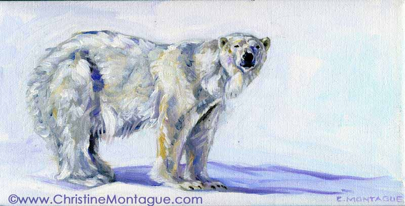 "Silatuyok.  (6"" x 12"" oil painting) Polar bear oil painting ©Christine Montague. Canada."