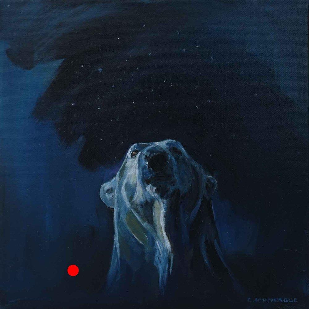 Sold. Polar Bear Hope