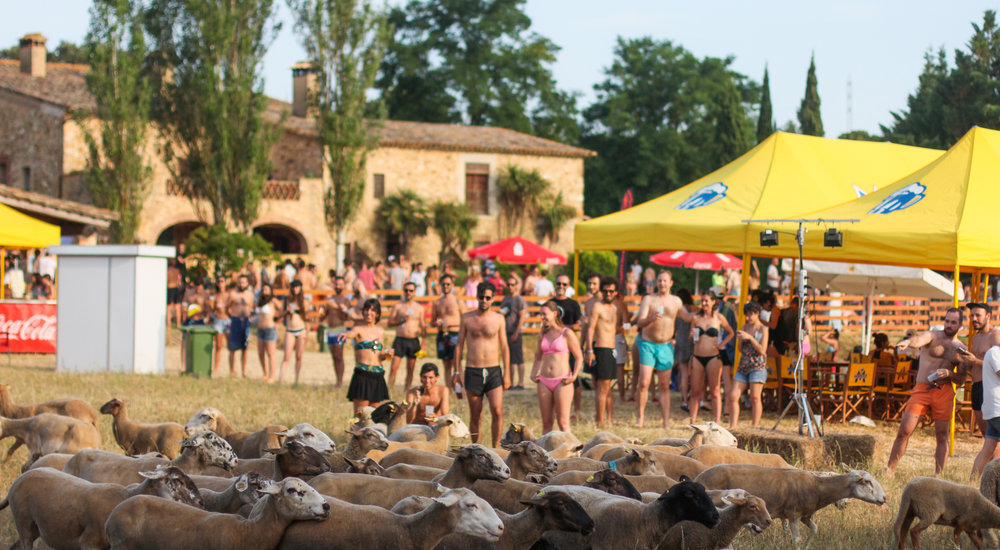 Ambiente_Ovellas_03 Festival_Era Pool Party_Fot Dani Canto.jpg