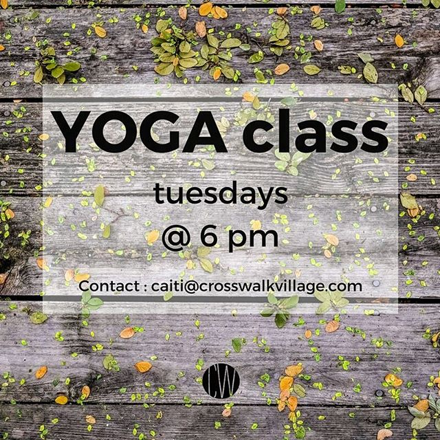 It's Tuesday again, so tonight is YOGA night! Contact Caiti or just show up tonight! Beginners welcome anytime! . . . #crosswalkvillage #lovewell #buildingcommunity #yogaeverydamnday #yogalove #yogamum #yogapants #thecrosswalkexperience #metime #vinyasayoga #womenconnect #unsplash #chsocm #cmconnect #socialschurch #churchteh #yogaonthelawn #stressfree #stressrelief #stressreliever #yogastyle #yogasoul