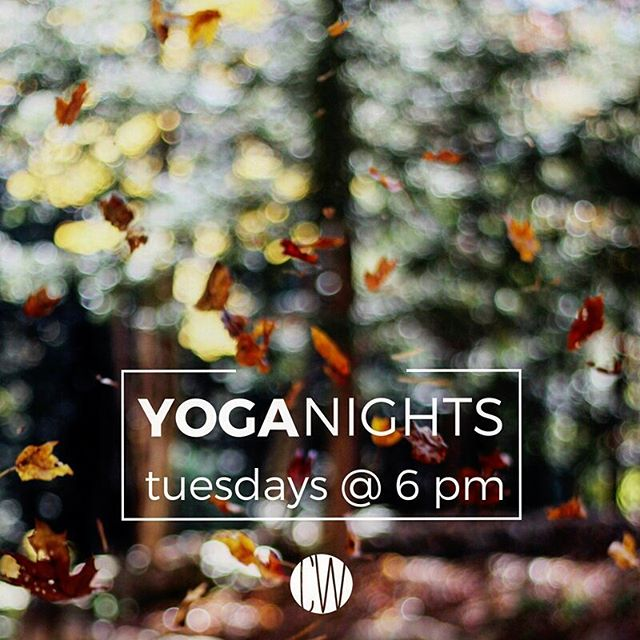 It's Tuesday again, so tonight is YOGA night! Contact Caiti or just show up tonight! Beginners welcome anytime!