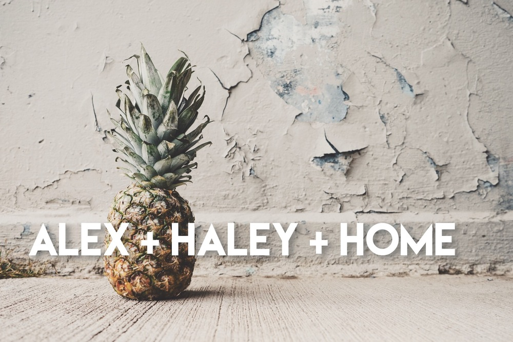 Follow Alex and Haley and their mid century modern home renovations