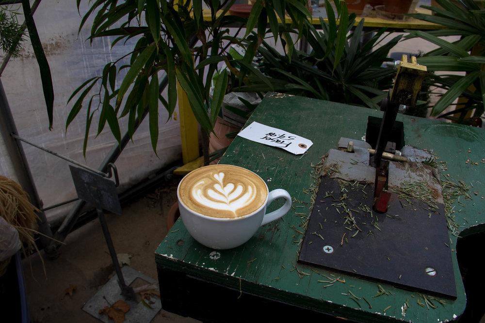 Coffee in the Greenhouse.jpg