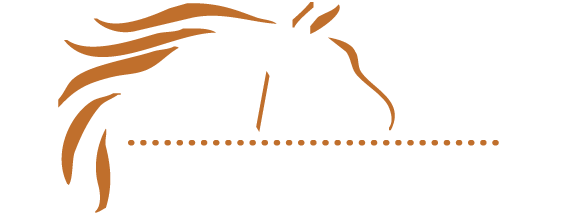 M/M Equine Spa and Rehab Center