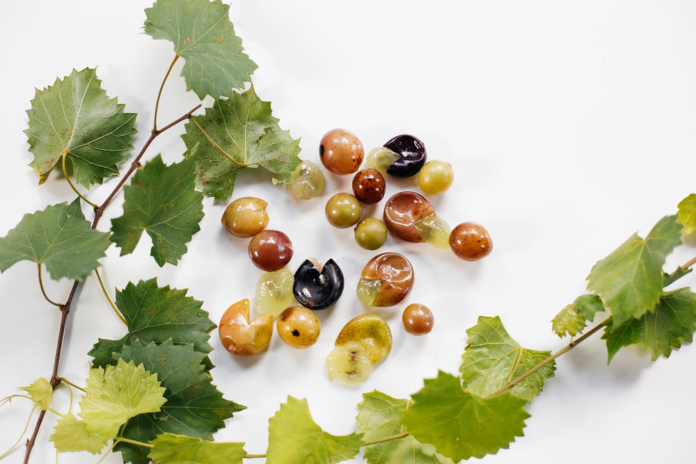 Foraging for wild grapes just might be our favorite edible activity this season.