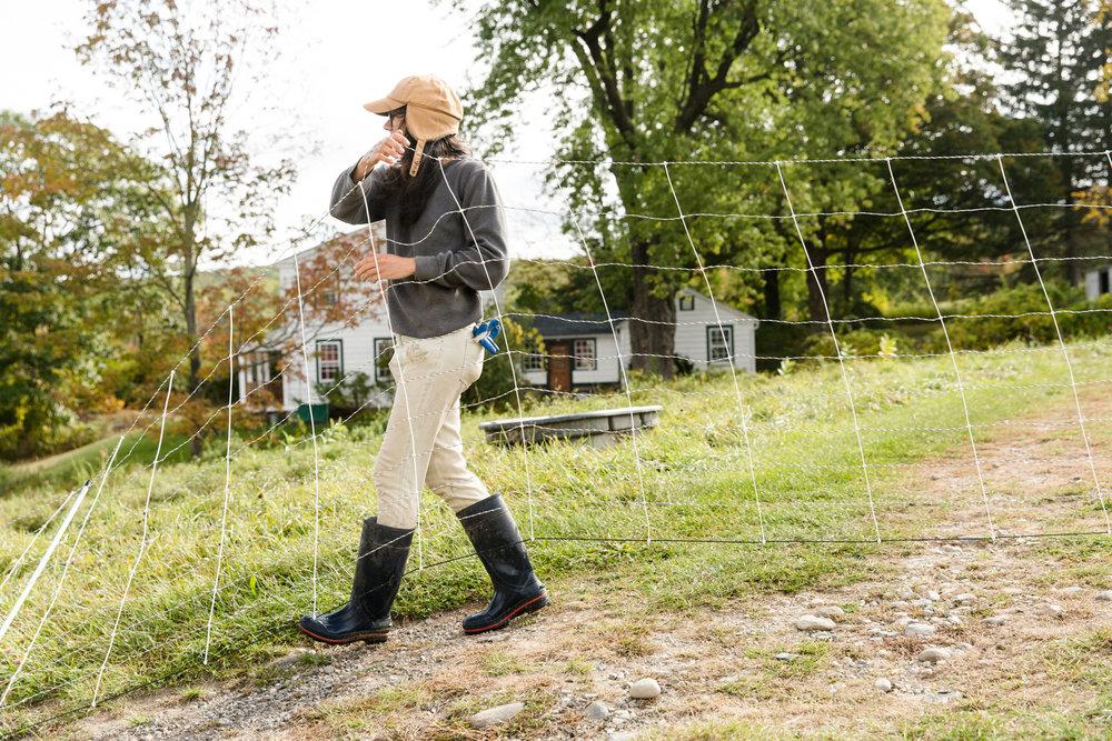 Glynwood Eva Deitch Photography Livestock-17.jpg
