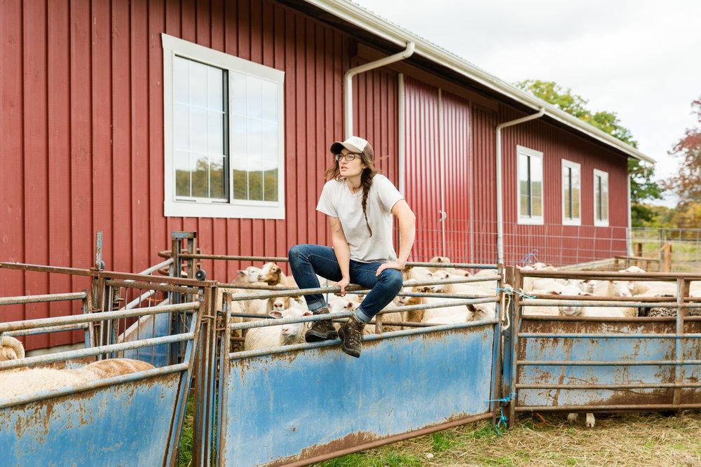 Glynwood Eva Deitch Photography Livestock-21.jpg