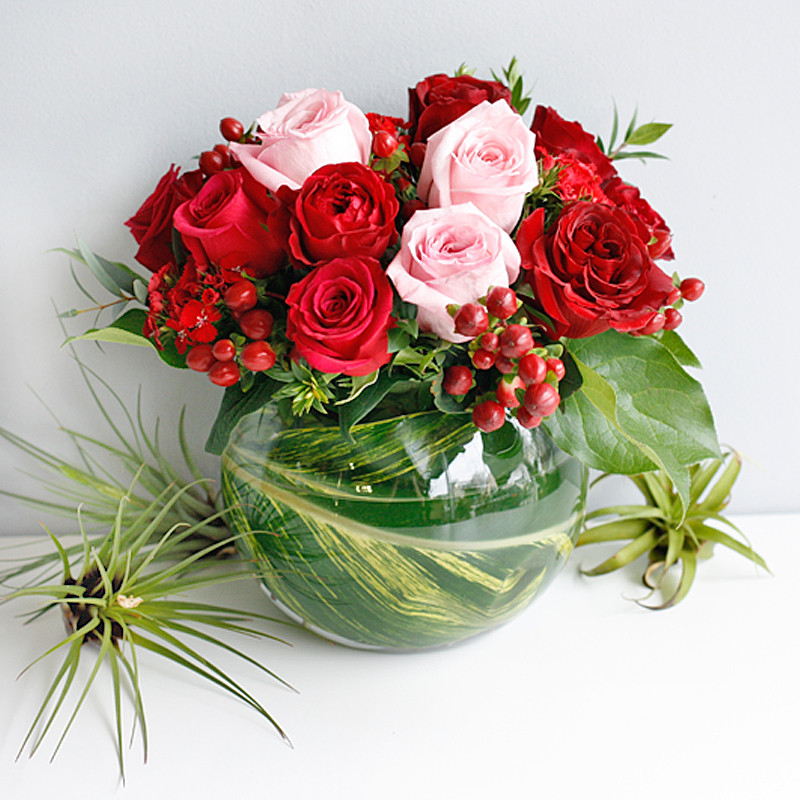Give your special someone the gift of stunning roses. Sweet Devotion - exclusively provided by Long Stems.  Order Today