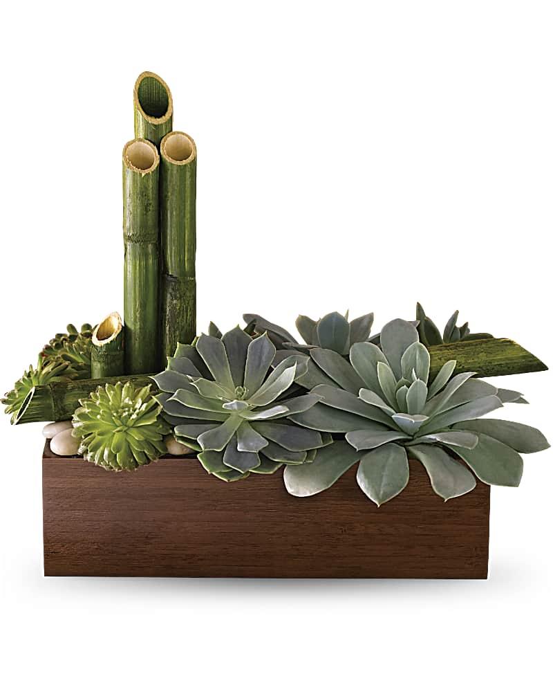 Zen Garden $60-$125 -