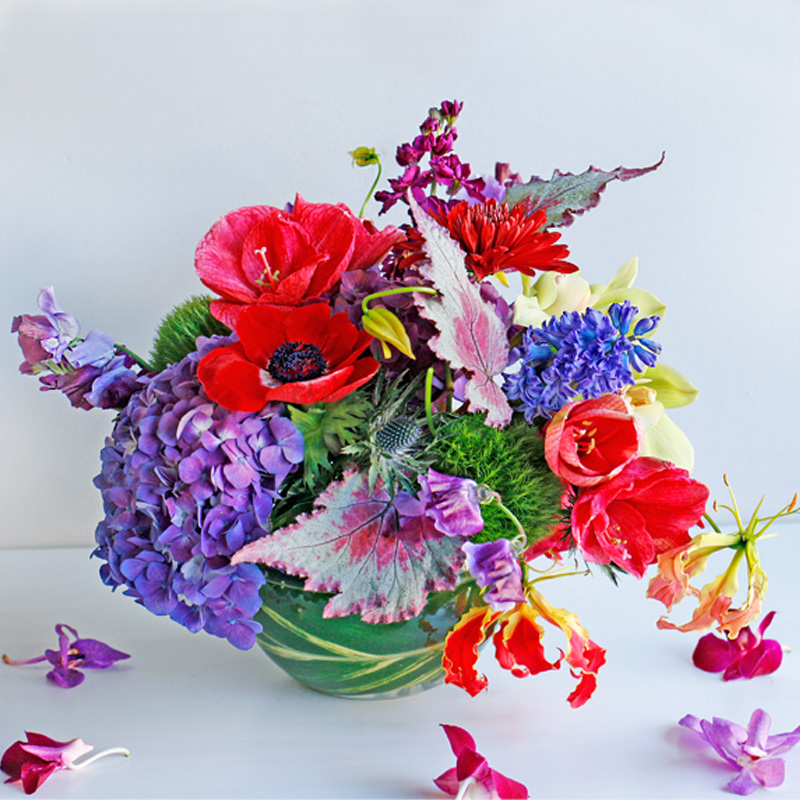 Spellbound (Above) - bright and vibrant blooms will leave your sweetheart breathless.