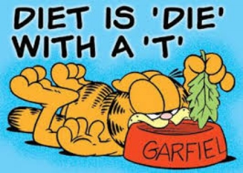 diet1.jpeg