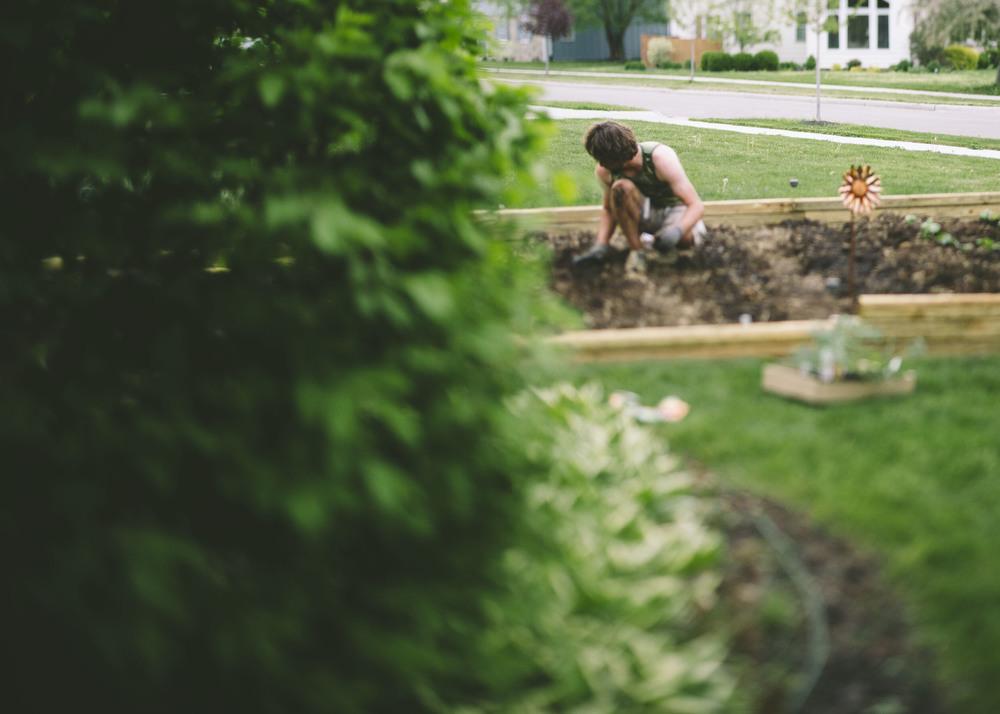 garden_31.jpg