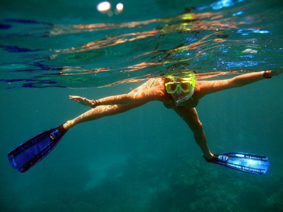Snorkel great barrier reef .jpeg