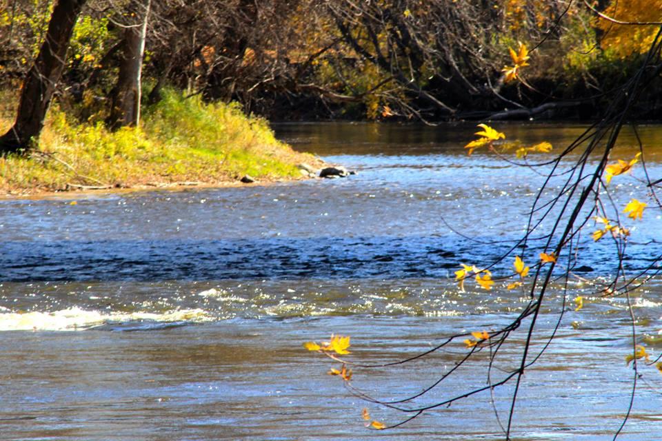 muskegon river.jpg