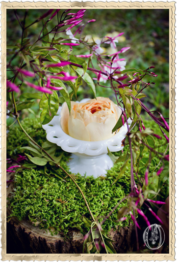 Caramel-Garden-Rose-Milk-Glass-Moss-Detail-Oleander-NJ-Bucks-Wedding-Florist