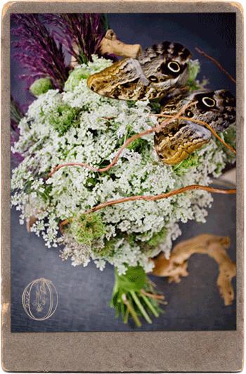 Laceflower-Summer-Vintage-Bouquet-Oleander-Bucks-County-Wedding-Florist