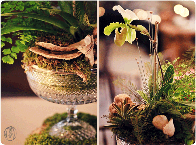 Holly-Hedge-Estate-Vintage-Woodland-Green-Crystal-Orchid-Moss-Wood-Mushroom-Terrarium-Centerpiece-Oleander-New-Jersey-Bucks-County-Wedding-Florist