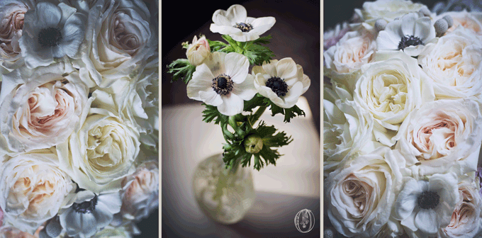 Holly-Hedge-Estate-Vintage-Winter-White-Grey-Blush-Dior-Anemone-Garden-Rose-Oleander-New-Jersey-Bucks-County-Wedding-Florist-Floral-Design