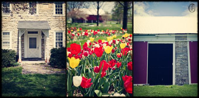 Wedding Venue Oleander Bucks County New Jersey Wedding Florist Event