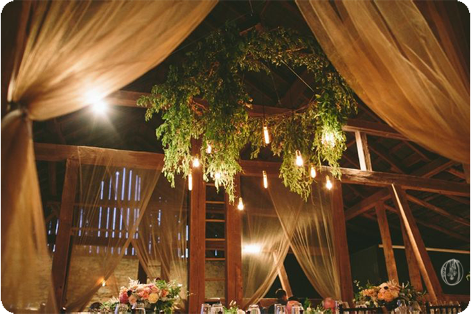 Edison-Bulb-Suspended-Olive-Branch-Floral-Chandelier-Sheer-Reception-Draping-Vintage-Rustic-Barn-Wedding-Organic-Farm-Wedding-Anthropologie-Wedding-Rodale-Institute-PA-Lauren-Fair-Oleander-Bucks-County-PA-NJ-Wedding-Florist-Floral-Event-Design