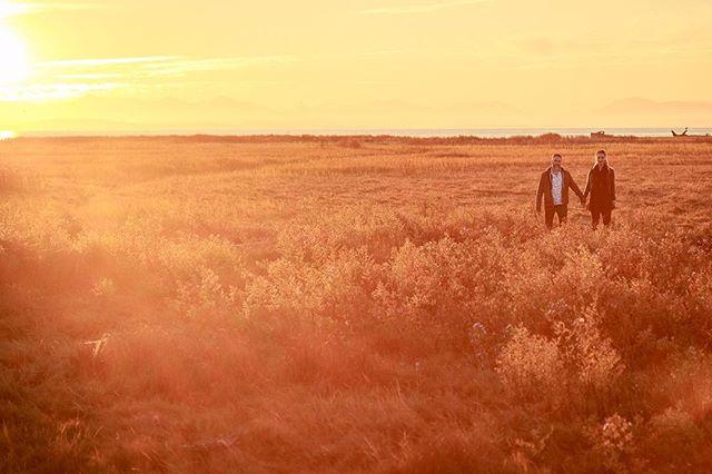 @i_am_pamm and @westoon at the Richmond dike last fall . . . . . #richmondbc #beautifulbritishcolumbia #richmonddike #love #portraits #engagementphotos #engagement #wedding #canoneos #canon #twilight #sunset #inthelonggrass #goldenhour #couples #areml