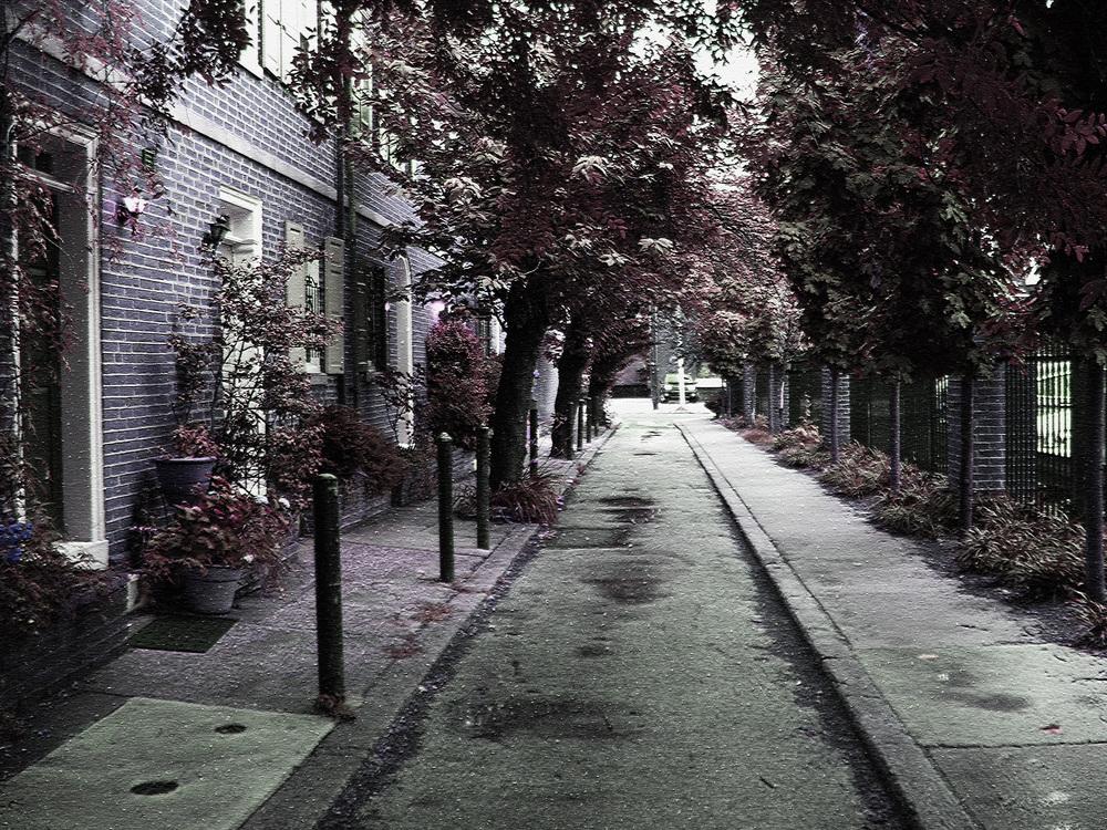 Street8b.jpg