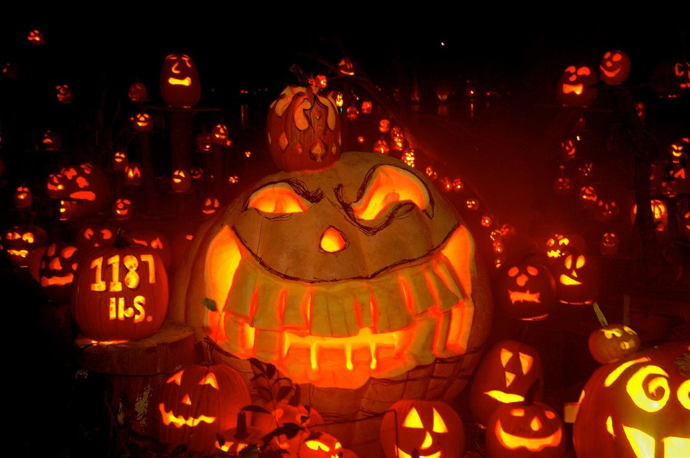 Jack 'O Lanterns: The Origins of a Halloween Tradition - The traditions of carving jack 'o lanterns originates with the Celts...