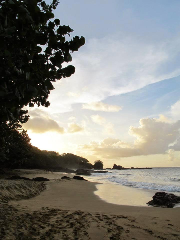 Caribbean%2Bbeach.jpg