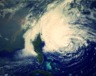 Sandy.jpeg