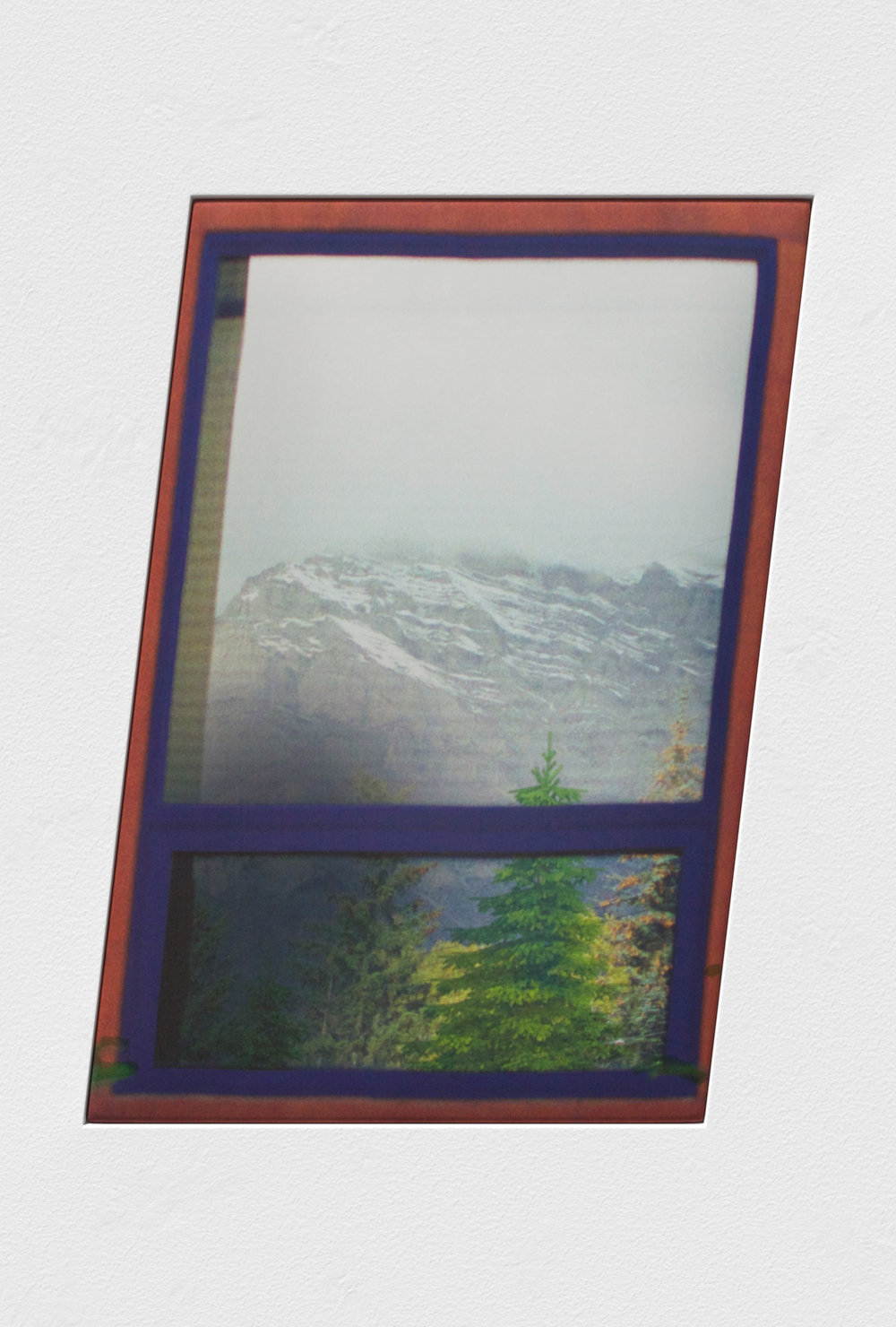 Douglas Fir I (Banff, AB)