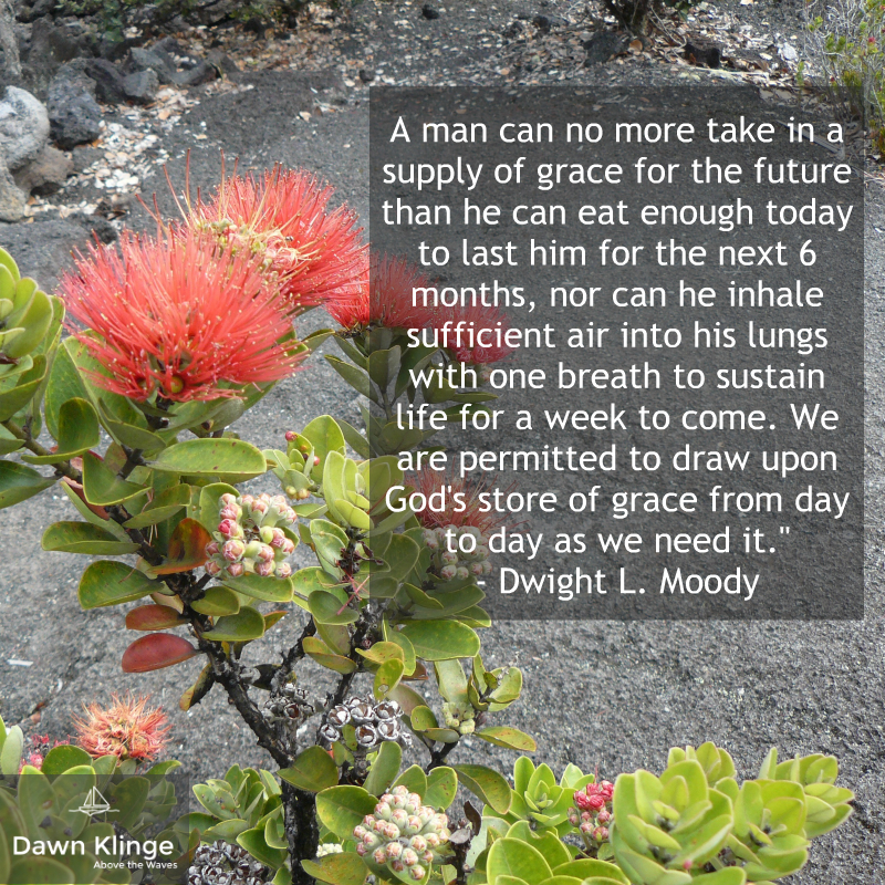 """A man can no more take in a supply of grace for the future than he can eat enough today to last him for the next 6 months, nor can he inhale sufficient air into his lungs with one breath to sustain life for a week to come. We are permitted to draw upon God's store of grace from day to day as we need it.""  - Dwight L. Moody"