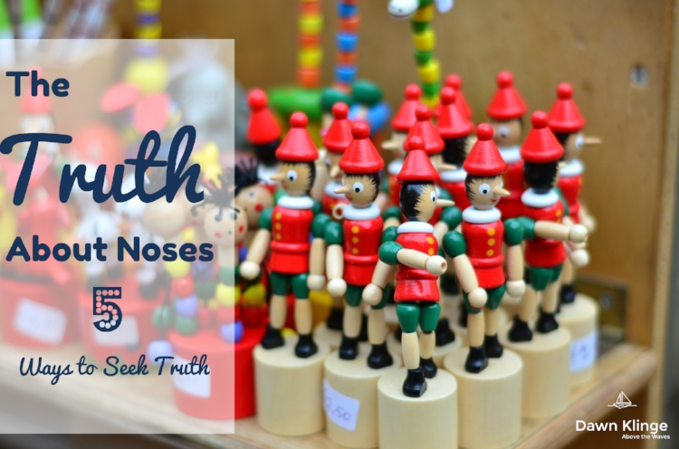 The Truth About Noses:  5 Ways to Seek Truth