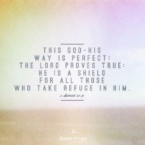 God's ways are perfect and he is a refuge