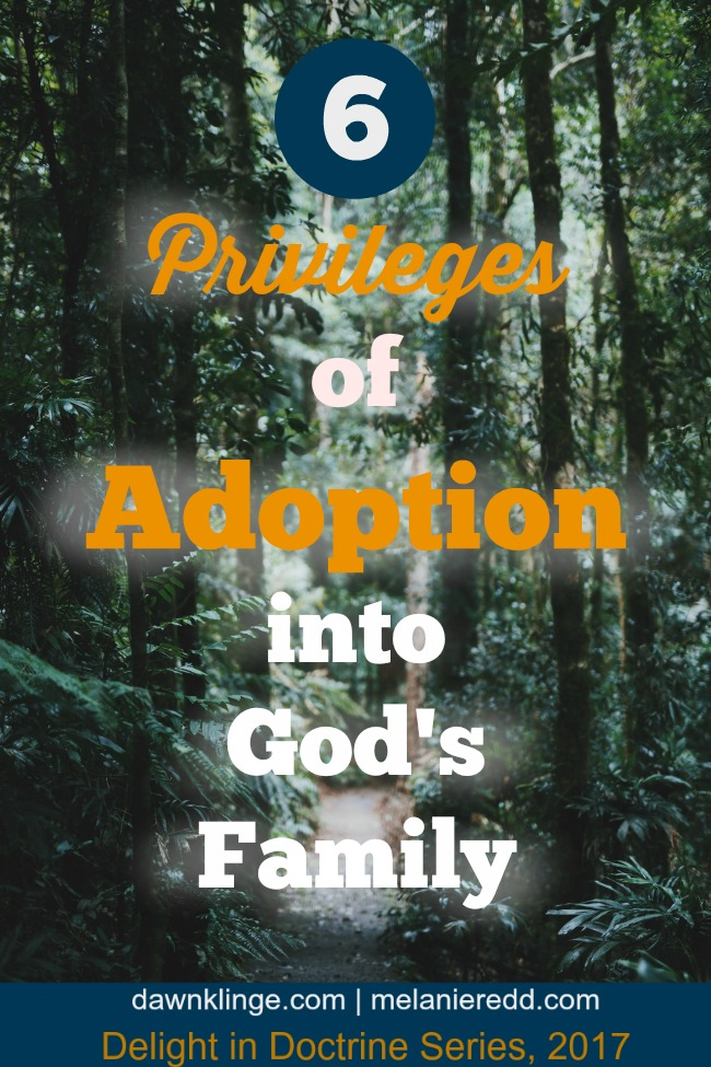 6 privileges of adoption into God's family I what it means to be in God's family I doctrine of adoption I Christian doctrine I gospel message of Christ I Above the Waves II #delightindoctrine #gospel
