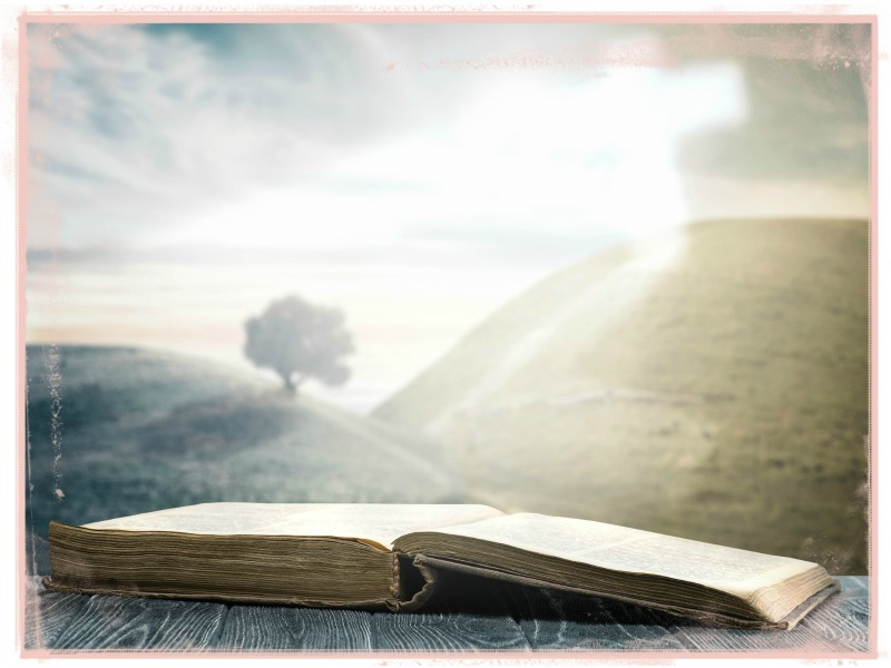Easy ideas to get inspired for Bible study + 30 Day reading plan | bible study techniques | how to study the bible | free Bible reading plan| Above the Waves || #biblestudy #biblereadingplan