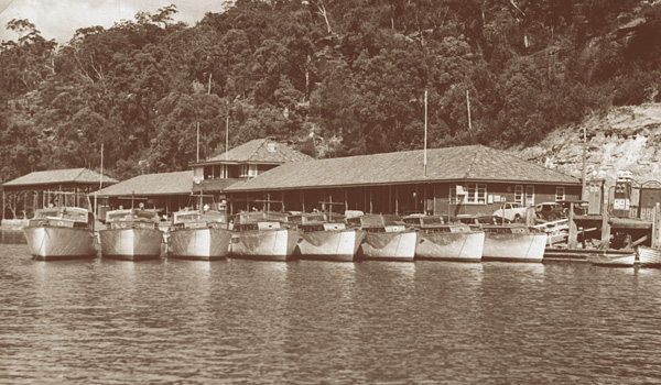 The Halvorsen fleet on the jetty at Bobbin Head.