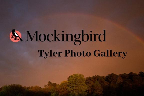 Tyler Photo Gallery.jpg