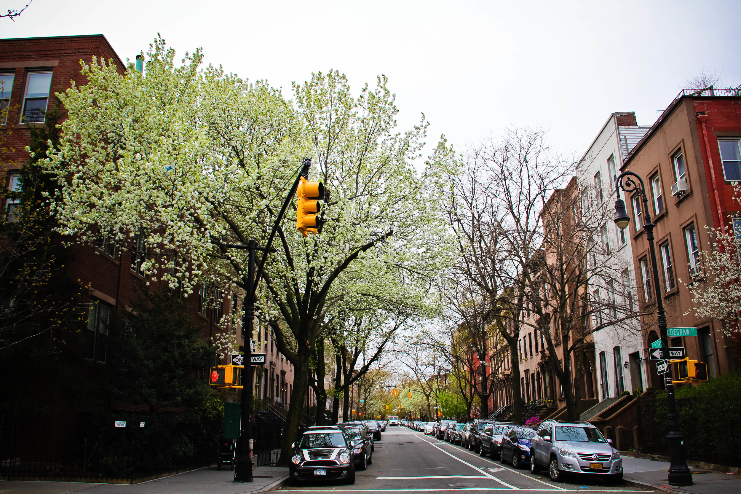 BK street (1 of 1)