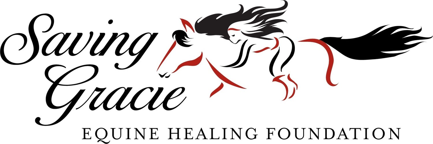 Saving Gracie Equine Healing Foundation