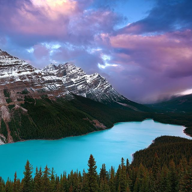 "Do you see the bear in this image? . Absolutely stunning Peyto Lake in Banff National Park. . This picture is also the cover image of my new video ""Canada: Coast to Coast"". Go watch it and let me know what you think! ▶️ Link in my profile"