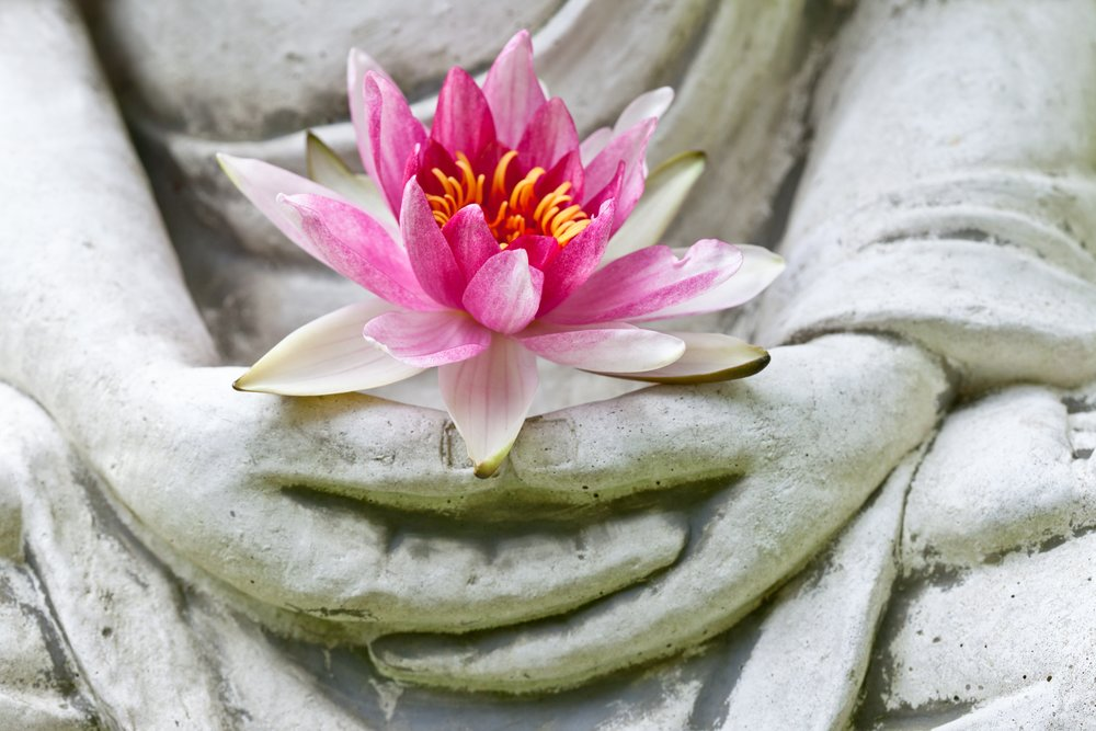 """""""Compassion and tolerance are not a sign of weakness, but a sign of strength."""" Dalai Lama"""