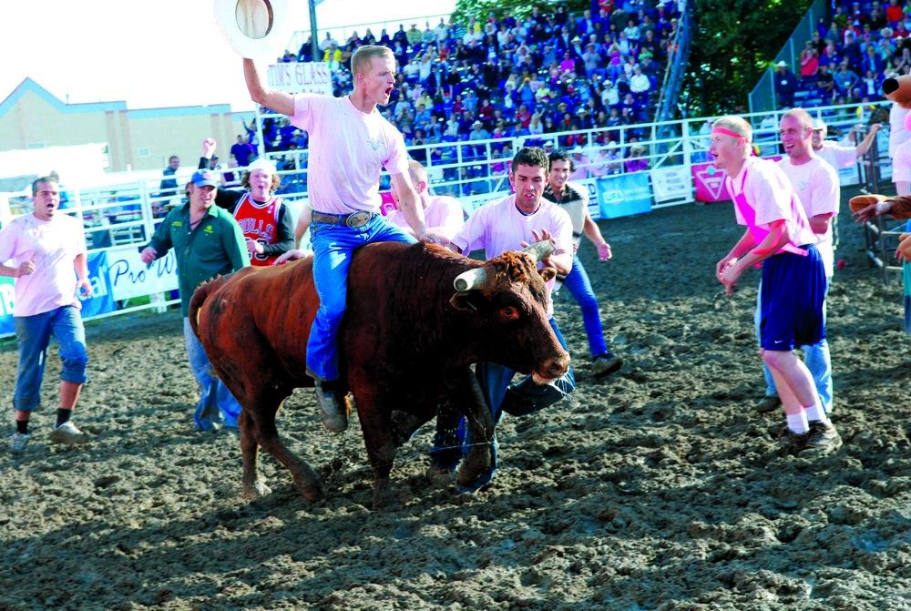 Running bulls 2010.jpg