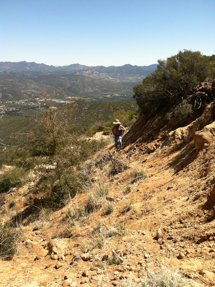 John McLean surveys the bluff for signs where the pegmatite surfaces. Click to enlarge. (Photo: Jason Stephenson)