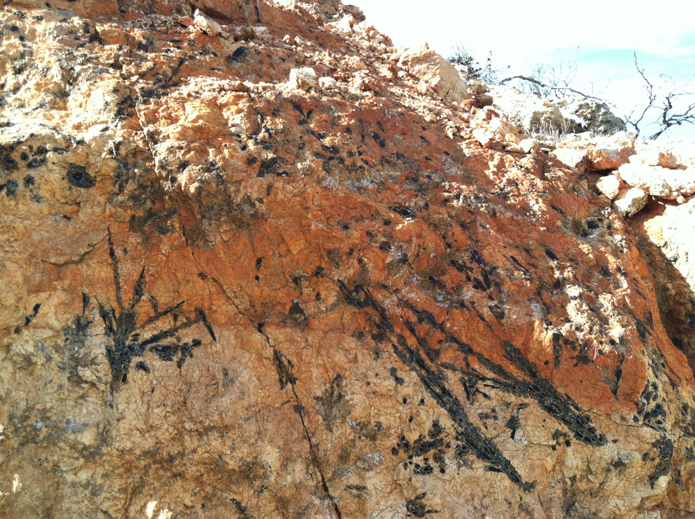 The pegmatite displays streaks of tourmaline at the Esmeralda Mine.  Click to enlarge.