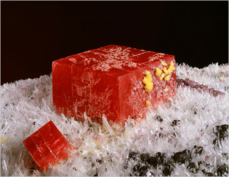"Starburst.  Show visitors also can take in the sights of the  Denver Museum of Nature and Science . Above, side view detail of ""The Alma King"" rhodochrosite from the Sweet Home Mine, Alma, Park County, Colorado, looking very much like the chewy candy we ate as kids. (Photo: Richard M. Wicker, © Denver Museum of Nature and Science)"