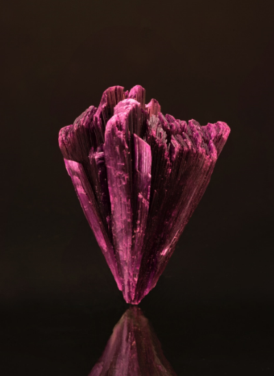 April flowers?  Erythrite from the Bou Azar District, Ouarzazate Province, Morocco, 4 x 3.2 cm. (Photo: Mia Dixon)