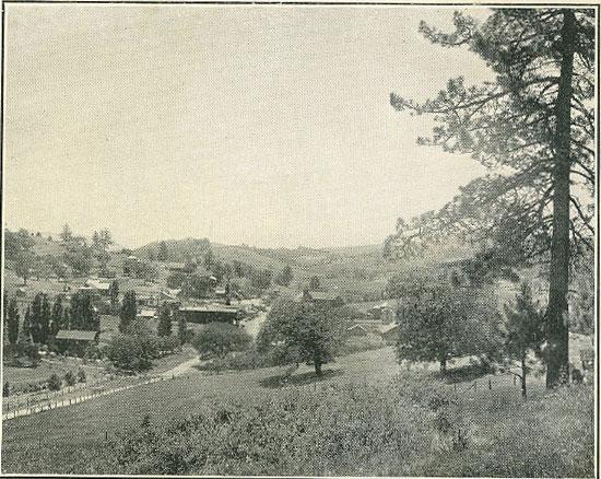 Julian Mining Camp